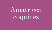 Amatrices Coquines- Blog Adulte
